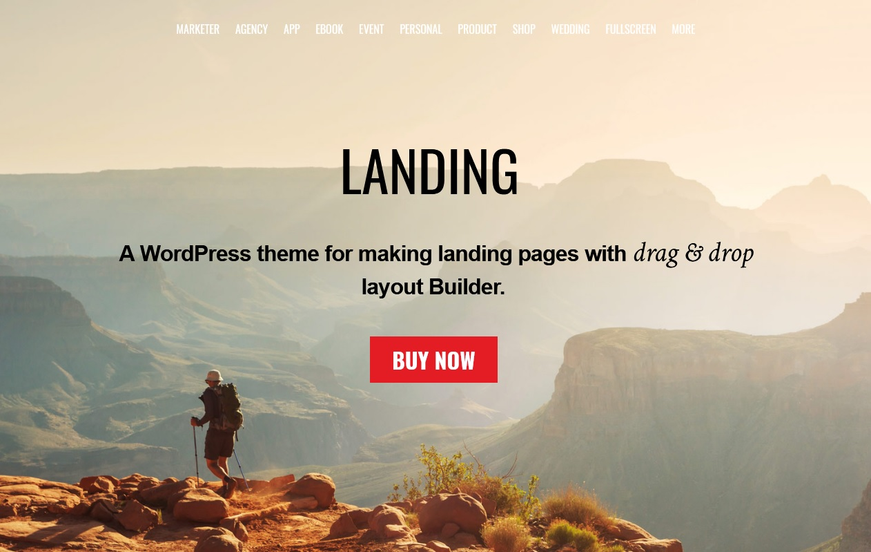 The best landing page themes and tool can help you in 2018 3
