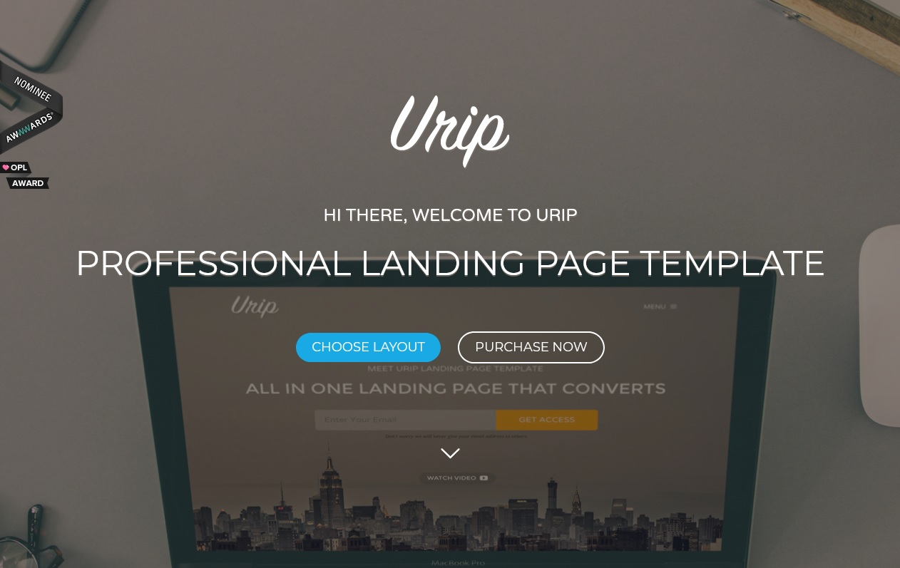 The best wordpress landing page themes for Conversions 5