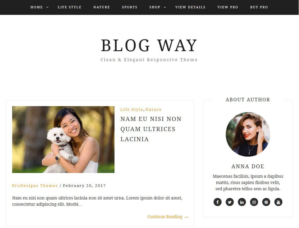 10+ of  best blogging theme for WordPress 1