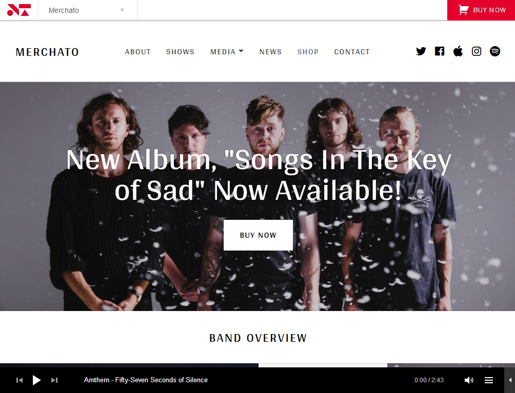 The Best 10  Musician WordPress Themes 9