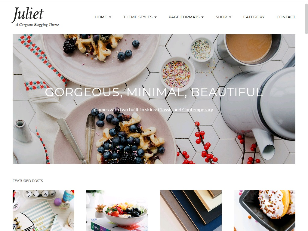 10+ of  best blogging theme for WordPress 4