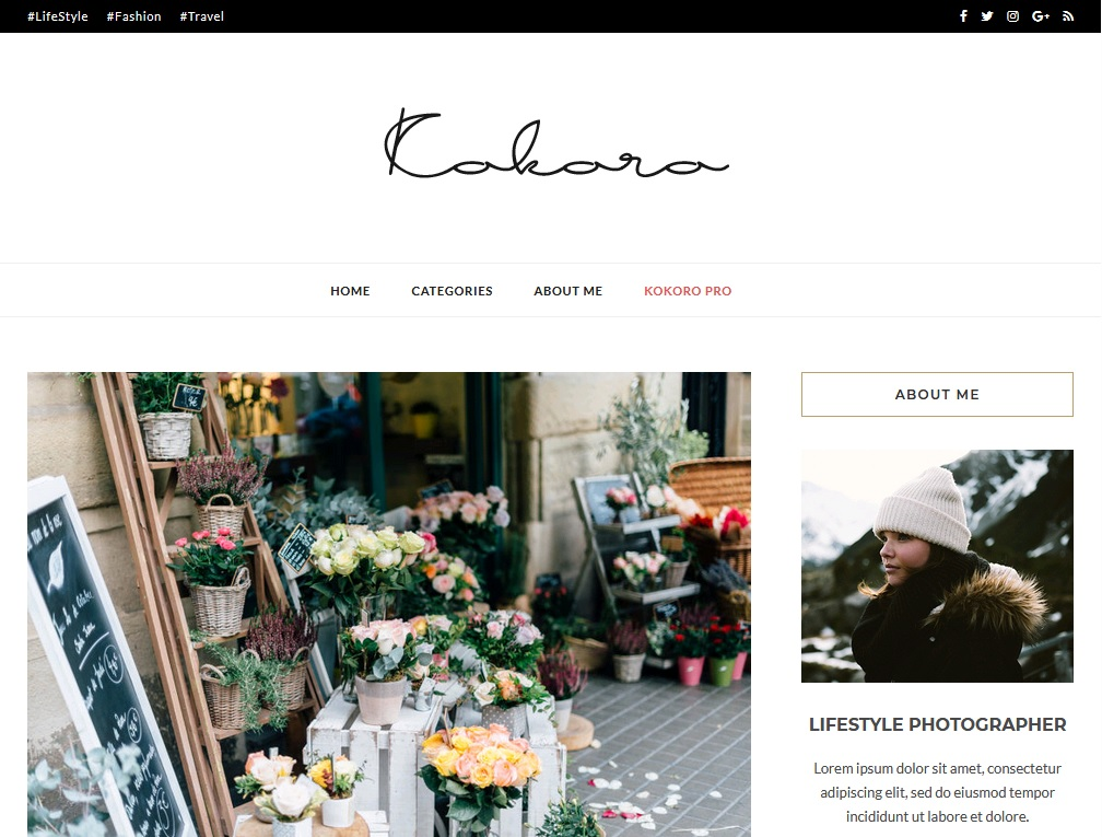 blogging theme