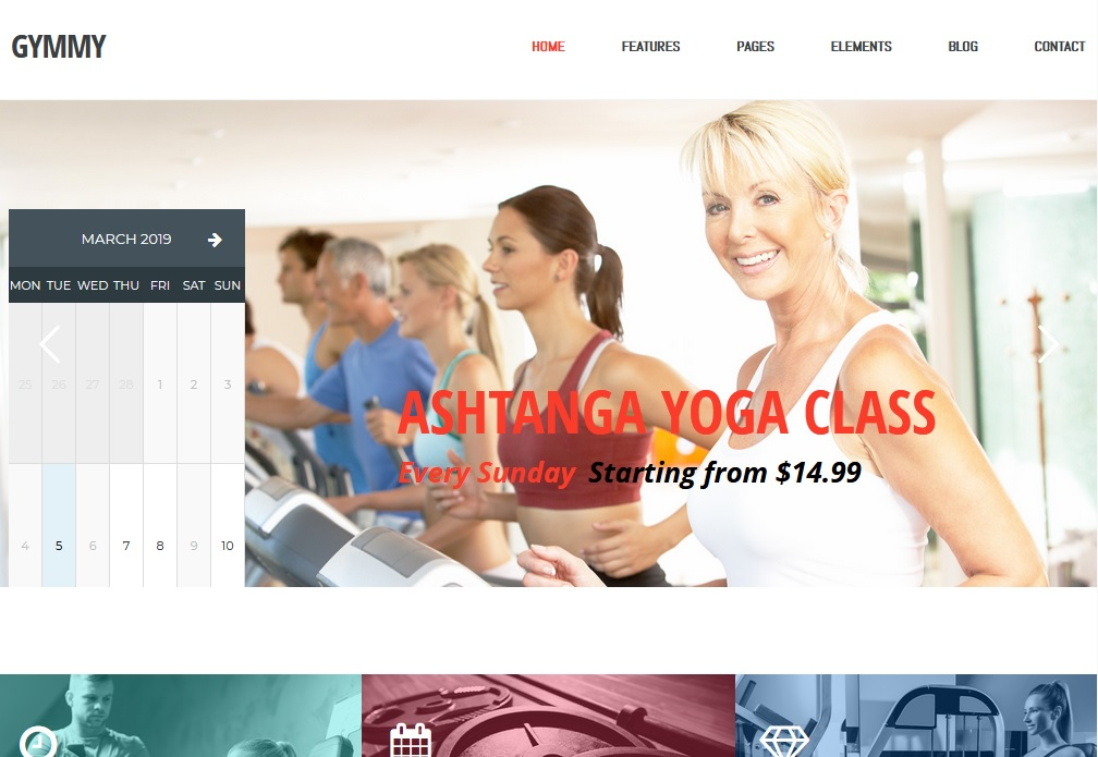 The best martial arts themes for WordPress websites 6
