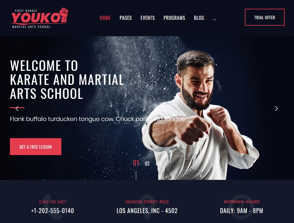 The best martial arts themes for WordPress websites 9