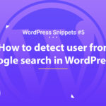 Detect User from Google Search in WordPress 10