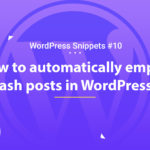 How to Automatically Empty Trash posts in WordPress 6